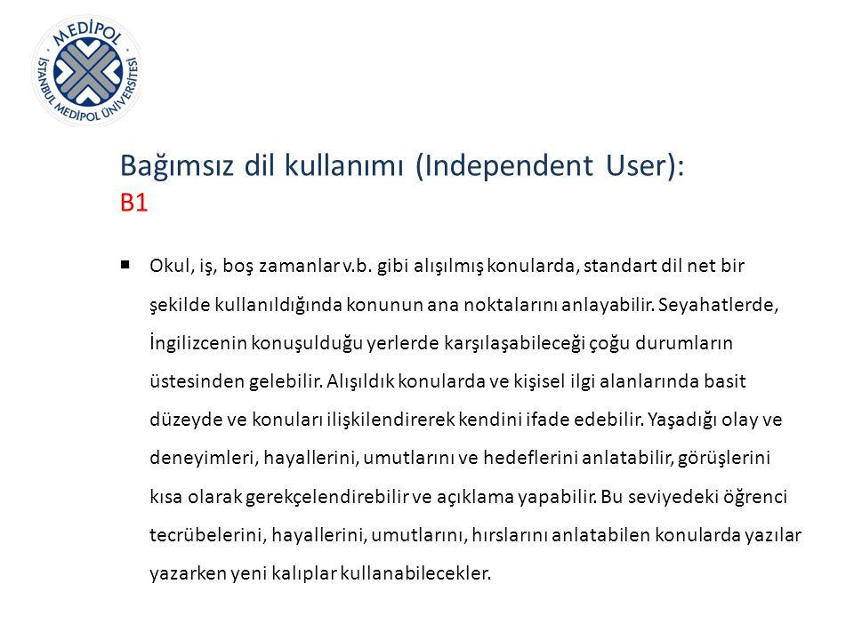 Bağımsız dil kullanımı (Independent User):
