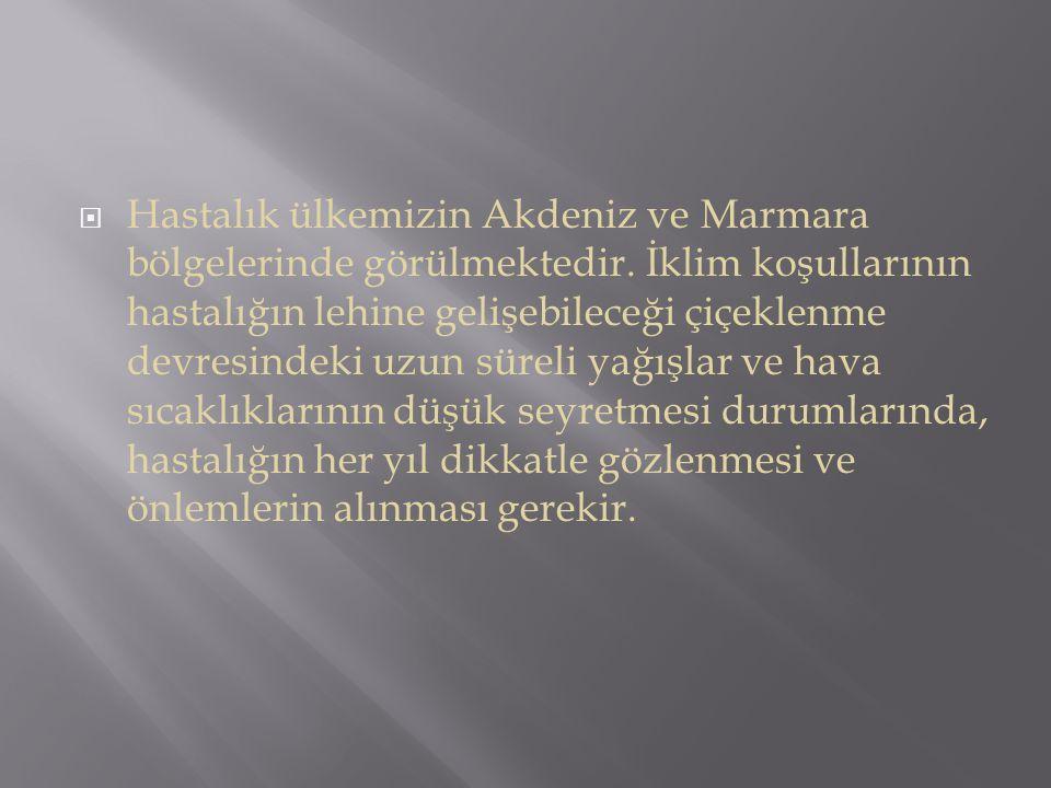 Hastalık ülkemizin Akdeniz ve Marmara bölgelerinde görülmektedir