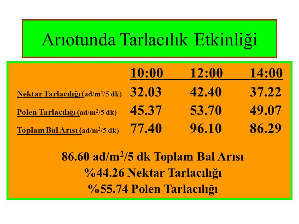 86.60 ad/m2/5 dk Toplam Bal Arısı