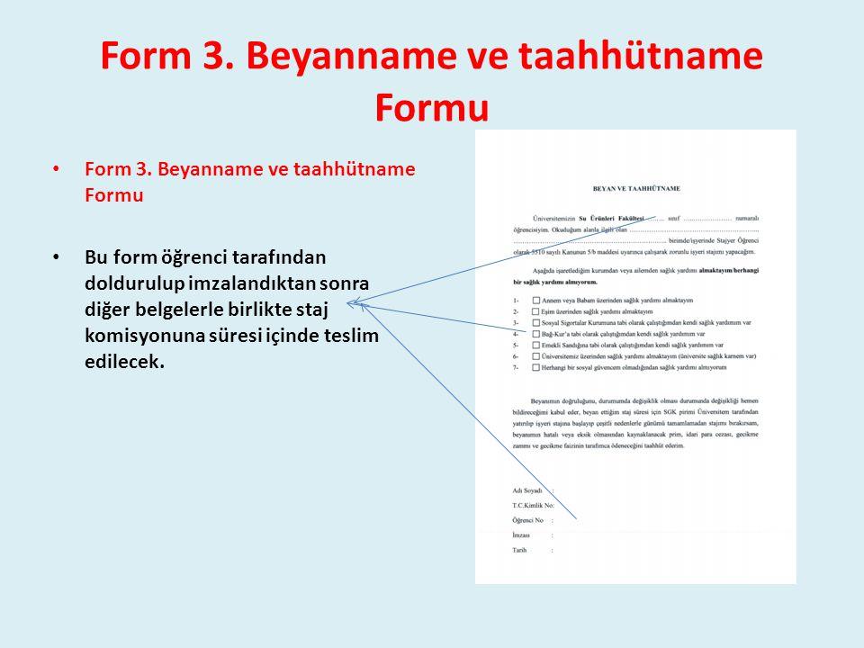 Form 3. Beyanname ve taahhütname Formu
