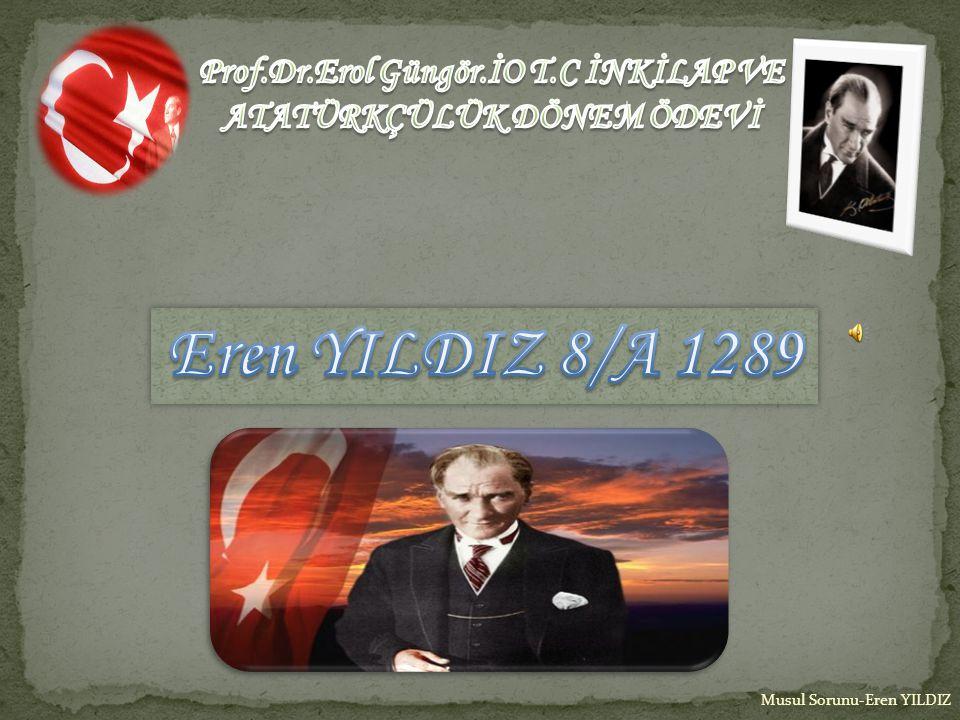 Prof.Dr.Erol Güngör.İO T.C İNKİLAP VE ATATÜRKÇÜLÜK DÖNEM ÖDEVİ