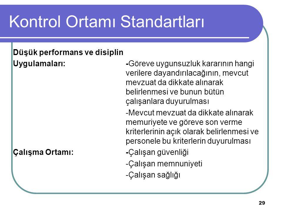 Kontrol Ortamı Standartları
