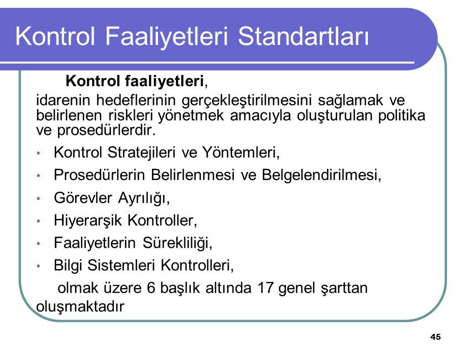 Kontrol Faaliyetleri Standartları