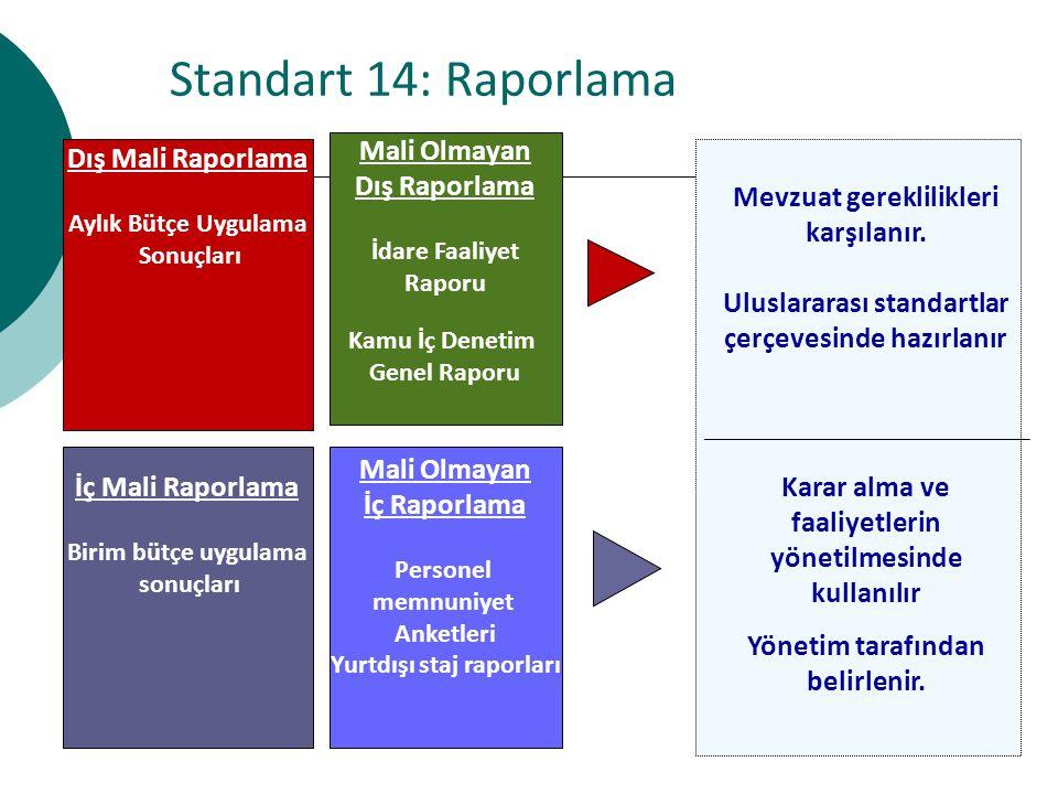 Standart 14: Raporlama Dış Mali Raporlama Mali Olmayan Dış Raporlama