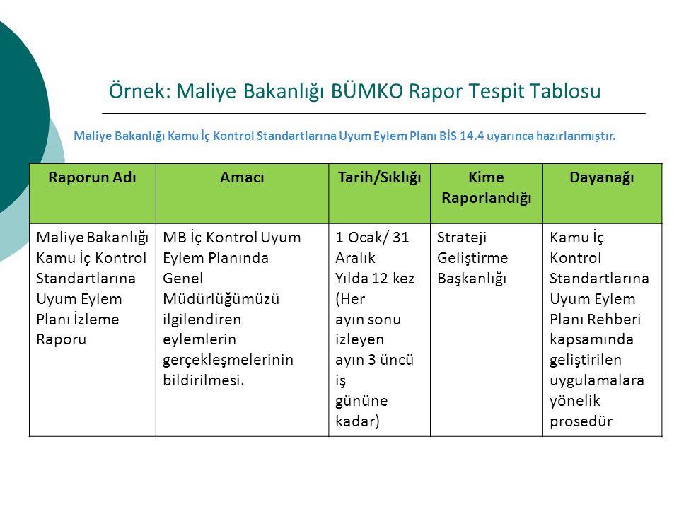 Örnek: Maliye Bakanlığı BÜMKO Rapor Tespit Tablosu
