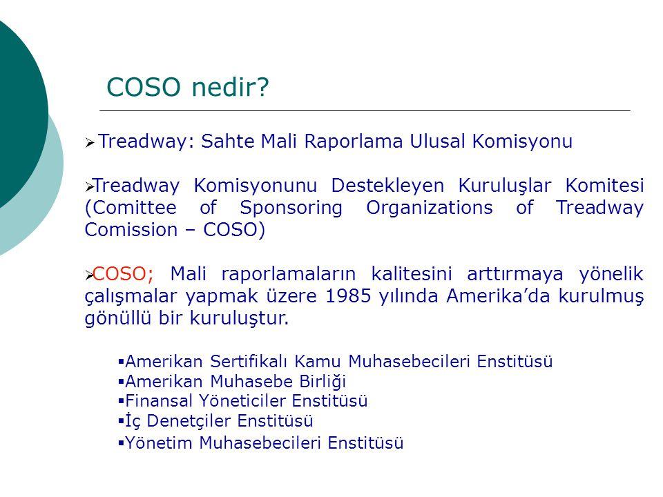 COSO nedir Treadway: Sahte Mali Raporlama Ulusal Komisyonu