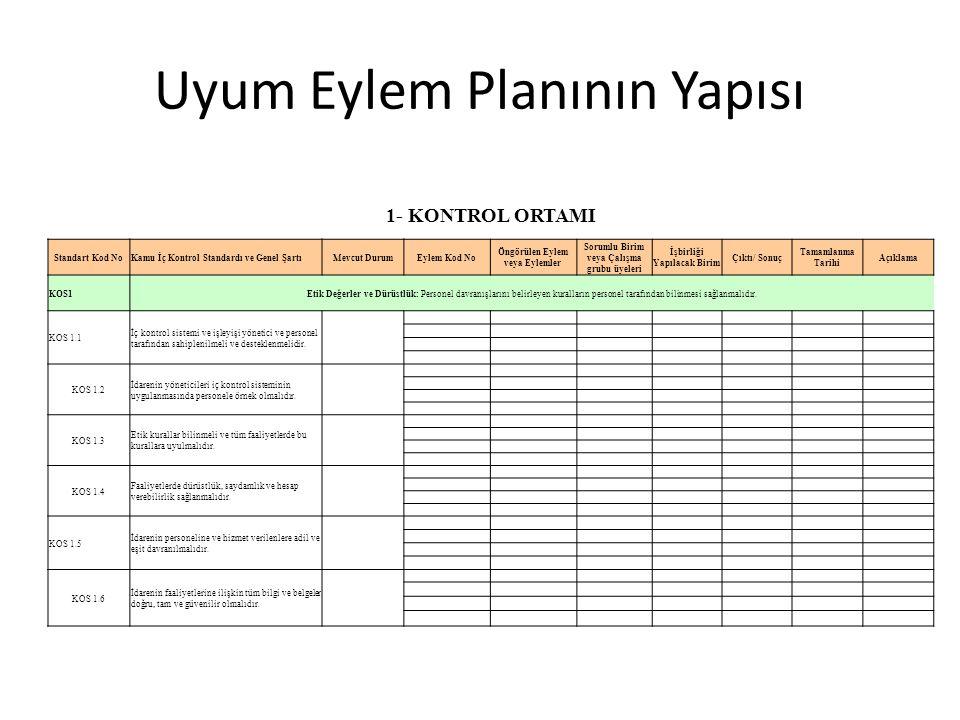 Uyum Eylem Planının Yapısı