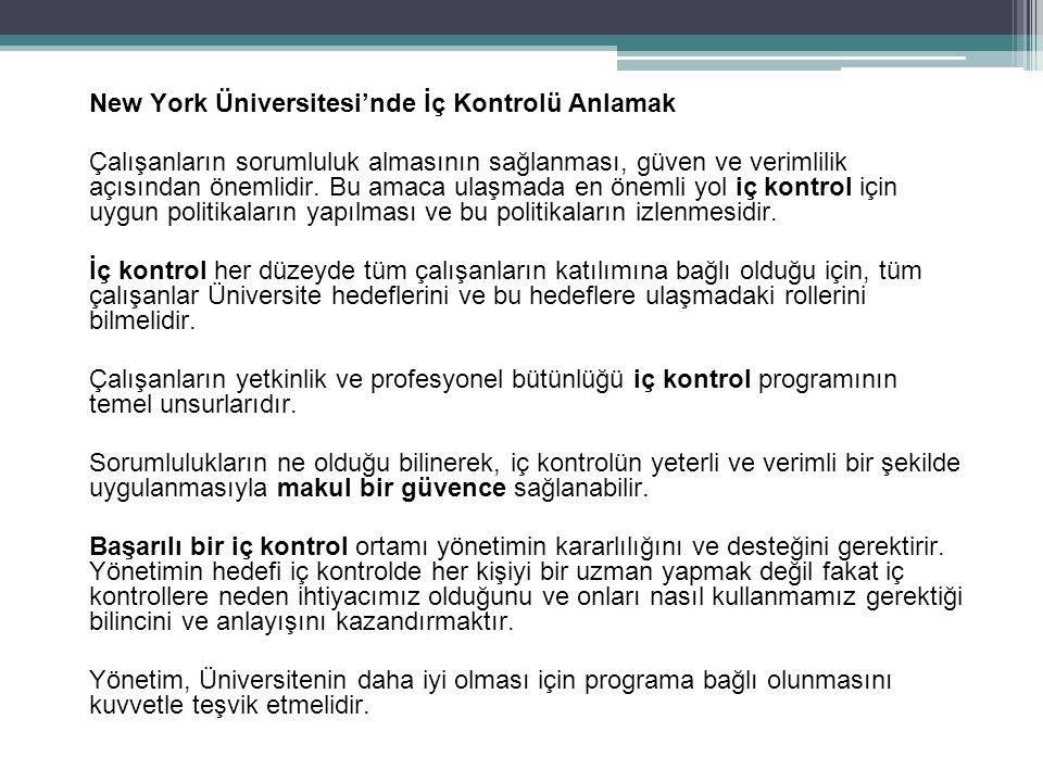 New York Üniversitesi'nde İç Kontrolü Anlamak
