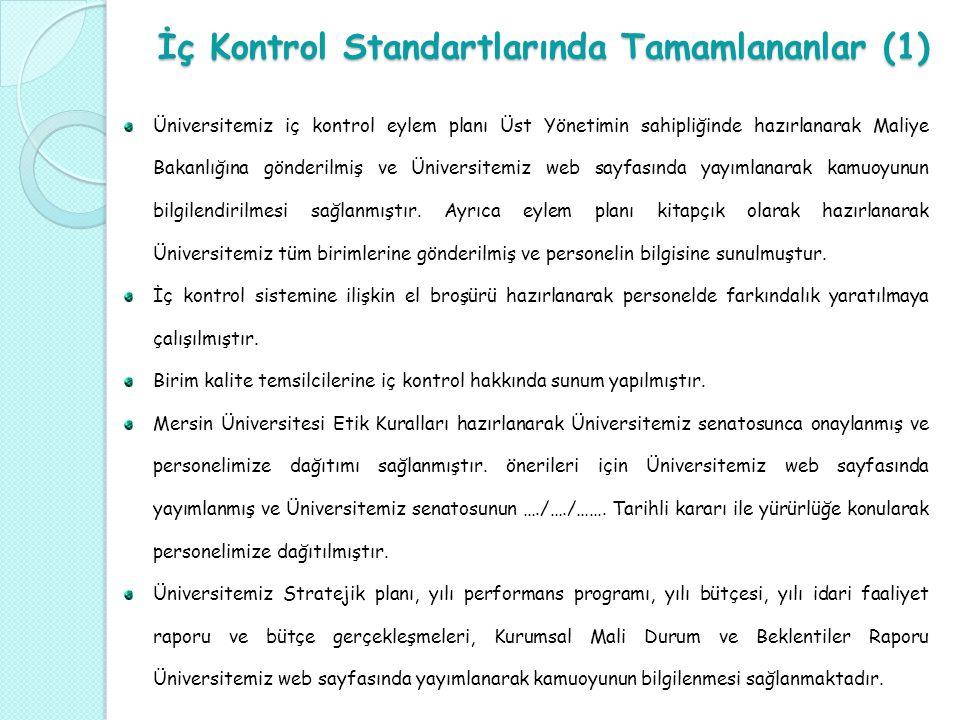 İç Kontrol Standartlarında Tamamlananlar (1)