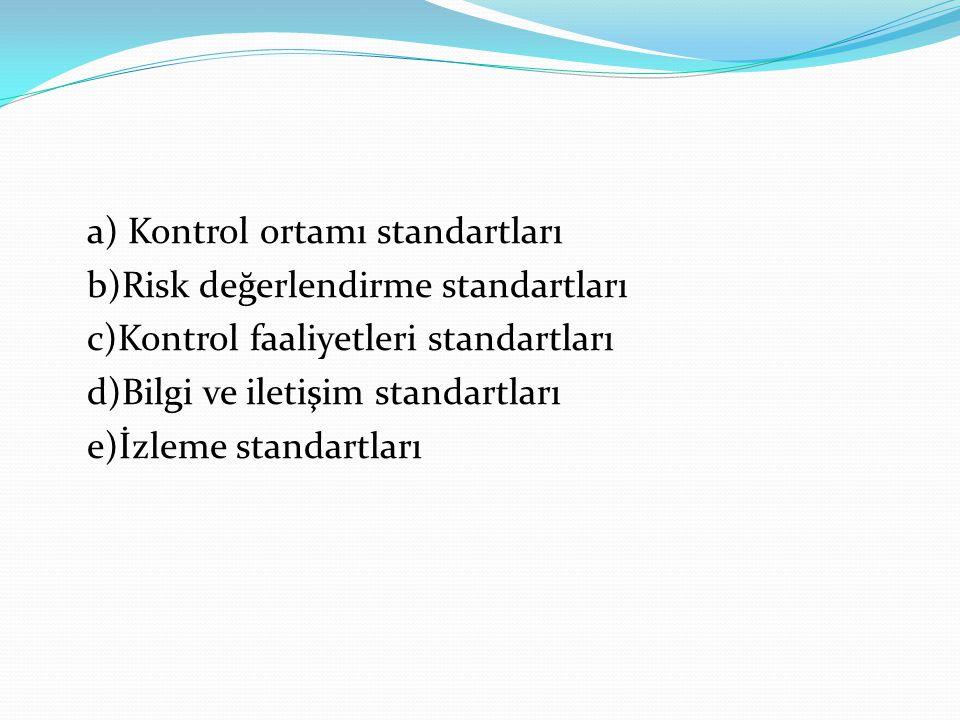 a) Kontrol ortamı standartları b)Risk değerlendirme standartları c)Kontrol faaliyetleri standartları d)Bilgi ve iletişim standartları e)İzleme standartları