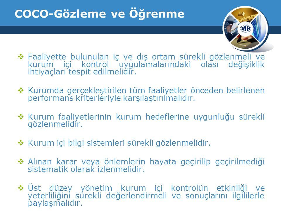 COCO-Gözleme ve Öğrenme