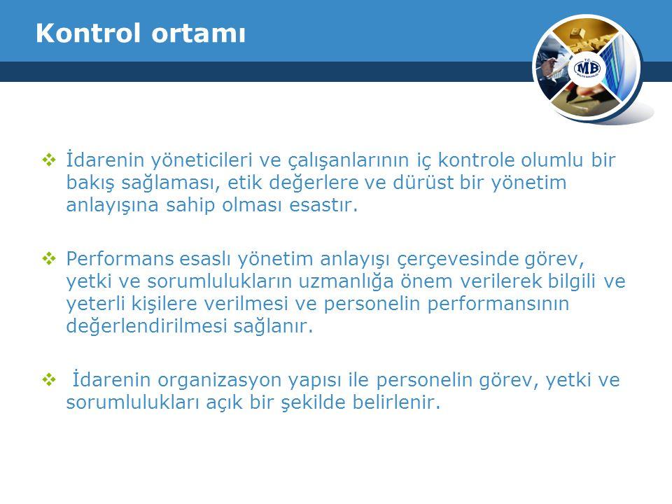 Kontrol ortamı