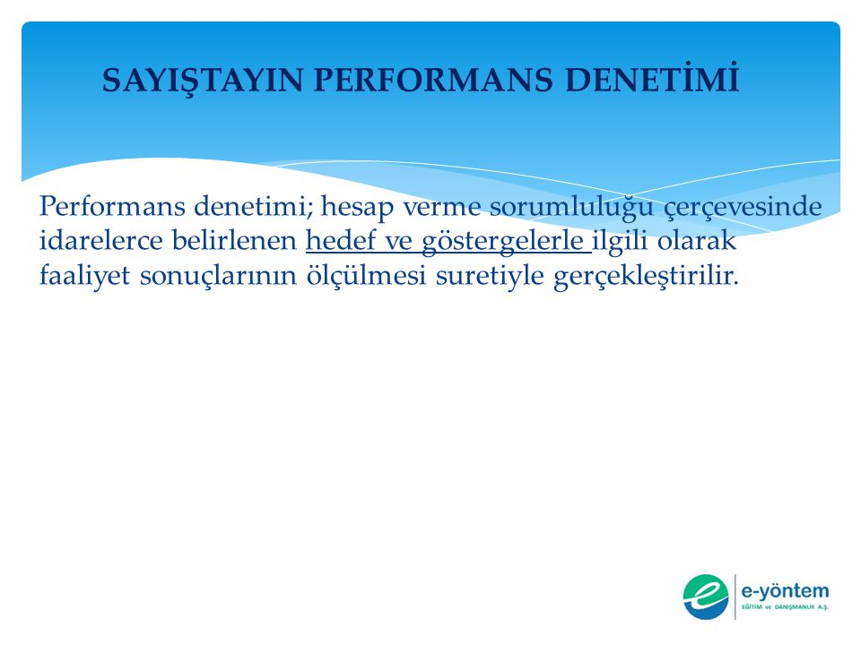 SAYIŞTAYIN PERFORMANS DENETİMİ