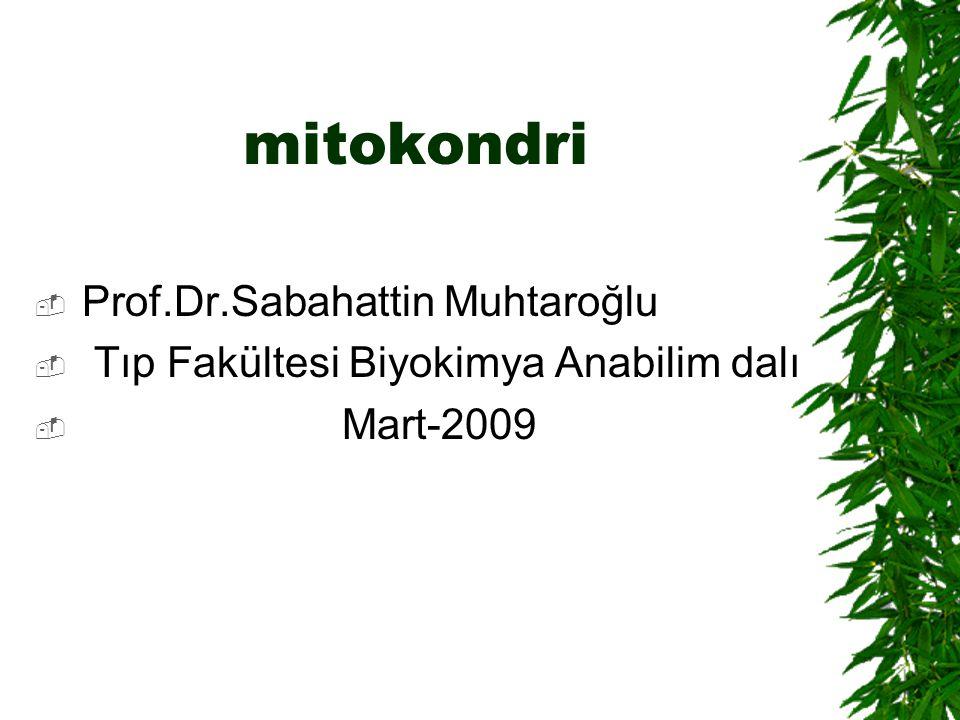mitokondri Prof.Dr.Sabahattin Muhtaroğlu