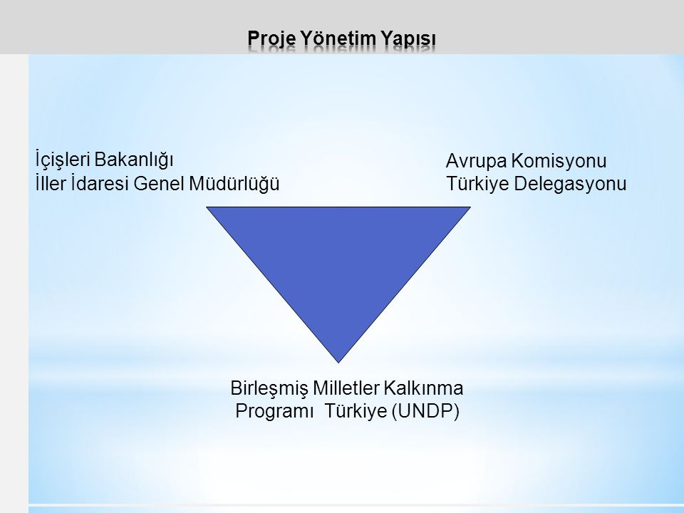 Birleşmiş Milletler Kalkınma Programı Türkiye (UNDP)