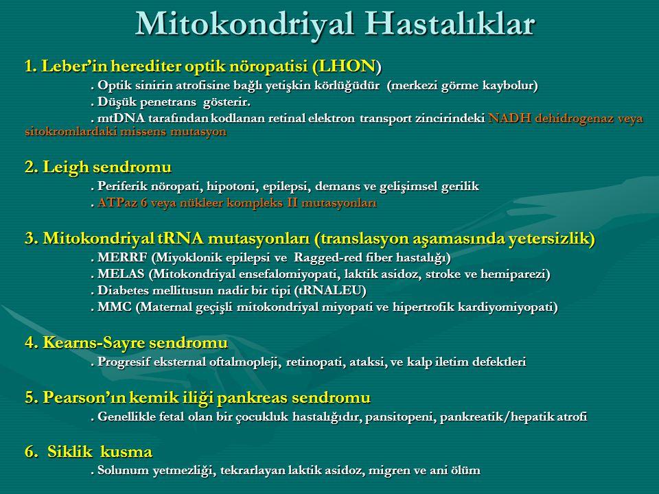 Mitokondriyal Hastalıklar