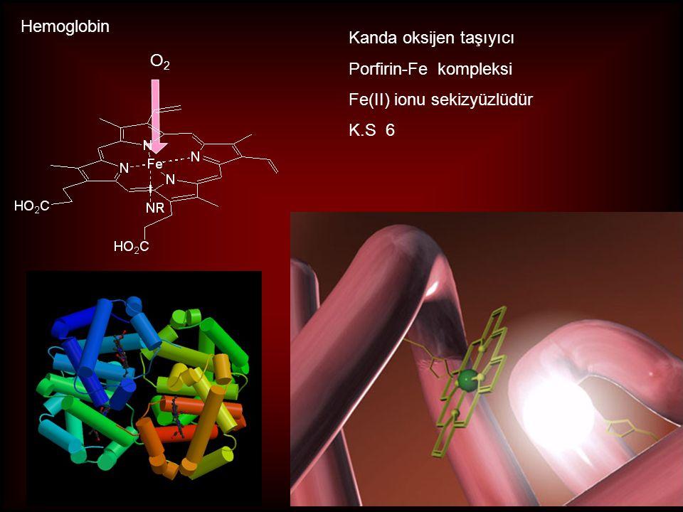Hemoglobin Kanda oksijen taşıyıcı Porfirin-Fe kompleksi Fe(II) ionu sekizyüzlüdür K.S 6 O2