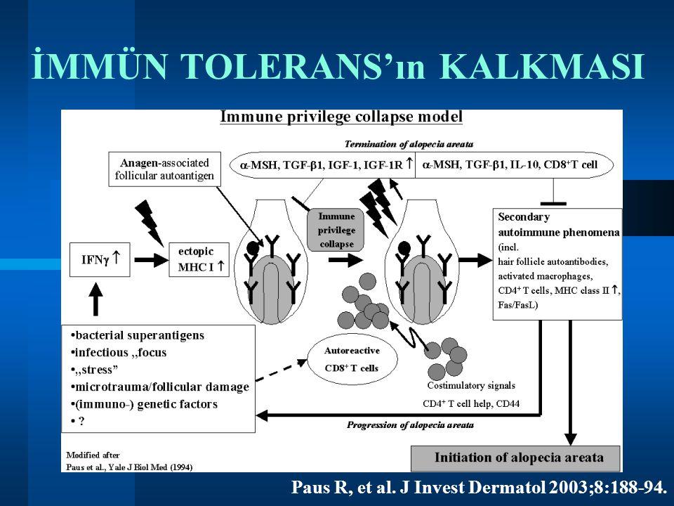 İMMÜN TOLERANS'ın KALKMASI