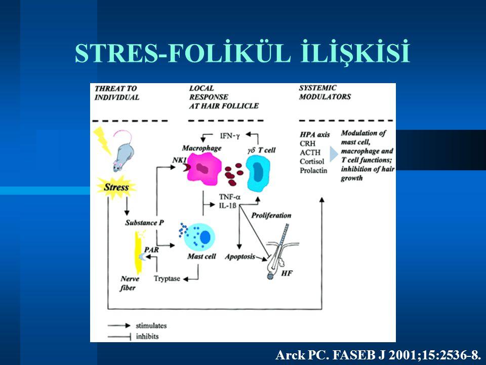 STRES-FOLİKÜL İLİŞKİSİ