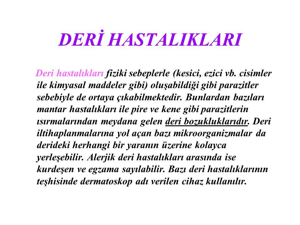 DERİ HASTALIKLARI