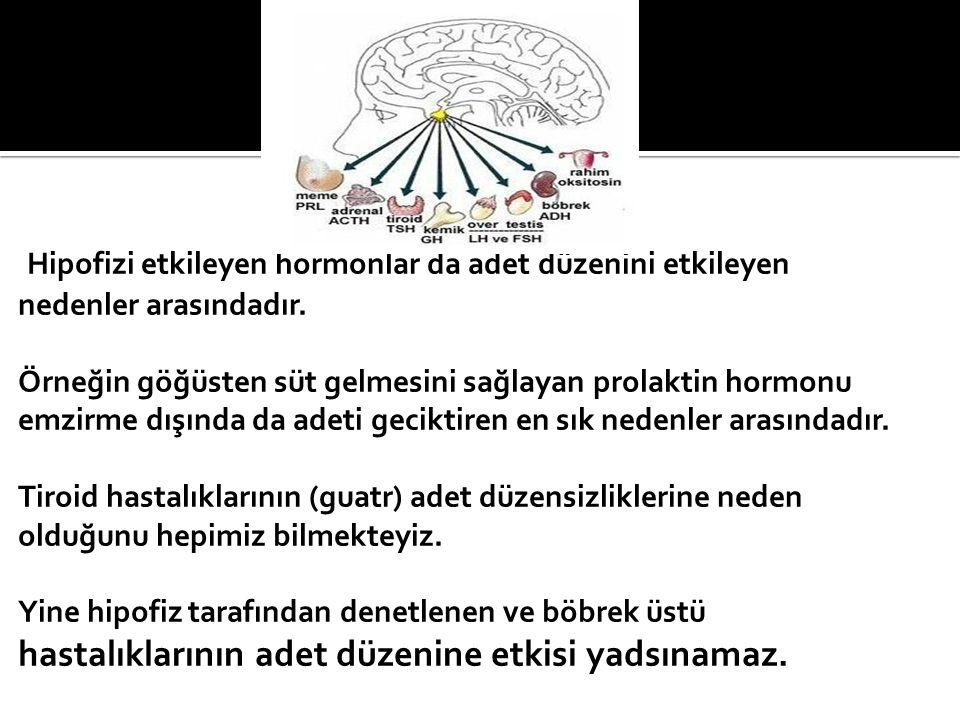 Hipofizi etkileyen hormonlar da adet düzenini etkileyen nedenler arasındadır.