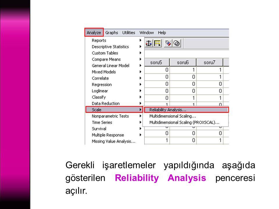 Gerekli işaretlemeler yapıldığında aşağıda gösterilen Reliability Analysis penceresi açılır.