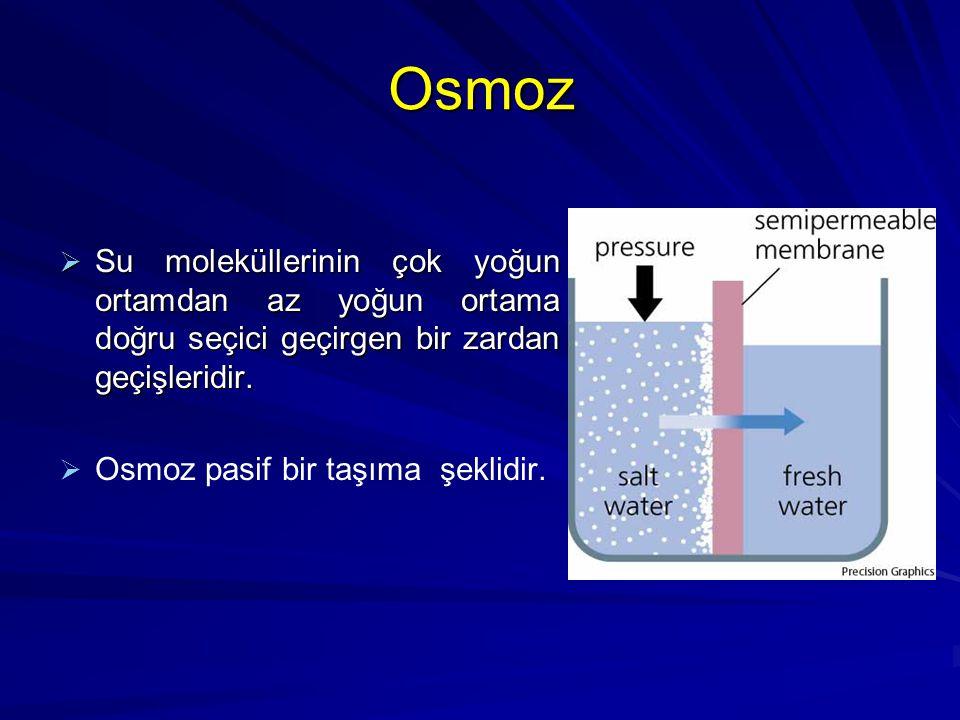 Osmoz Su moleküllerinin çok yoğun ortamdan az yoğun ortama doğru seçici geçirgen bir zardan geçişleridir.