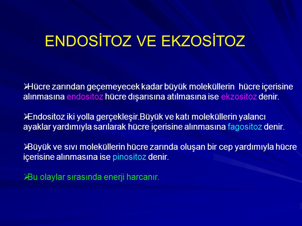 ENDOSİTOZ VE EKZOSİTOZ