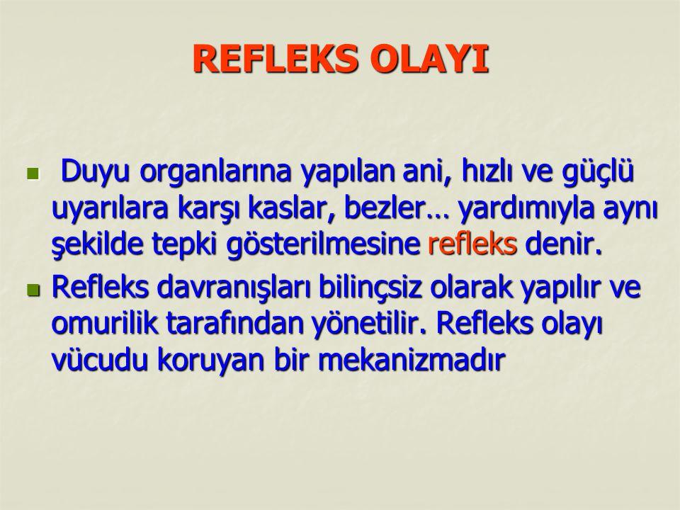 REFLEKS OLAYI