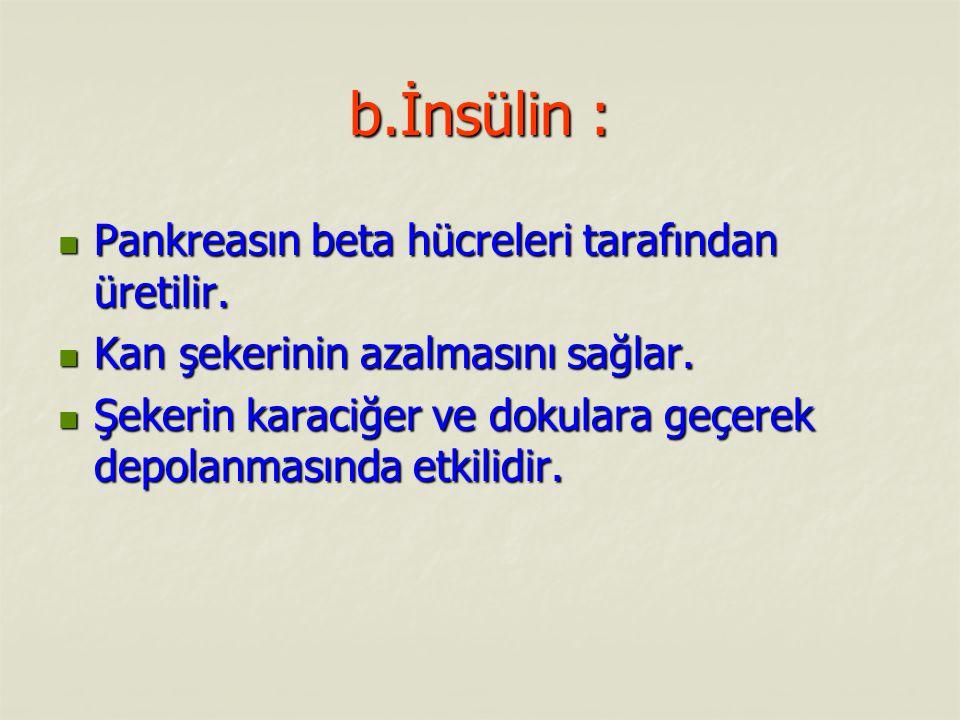 b.İnsülin : Pankreasın beta hücreleri tarafından üretilir.
