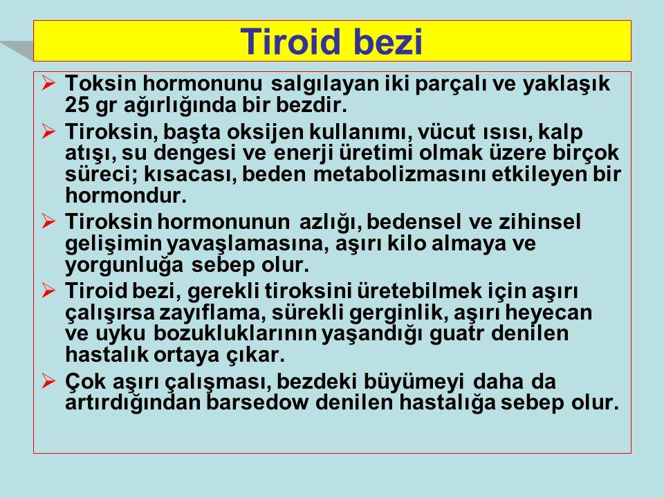 Tiroid bezi Toksin hormonunu salgılayan iki parçalı ve yaklaşık 25 gr ağırlığında bir bezdir.