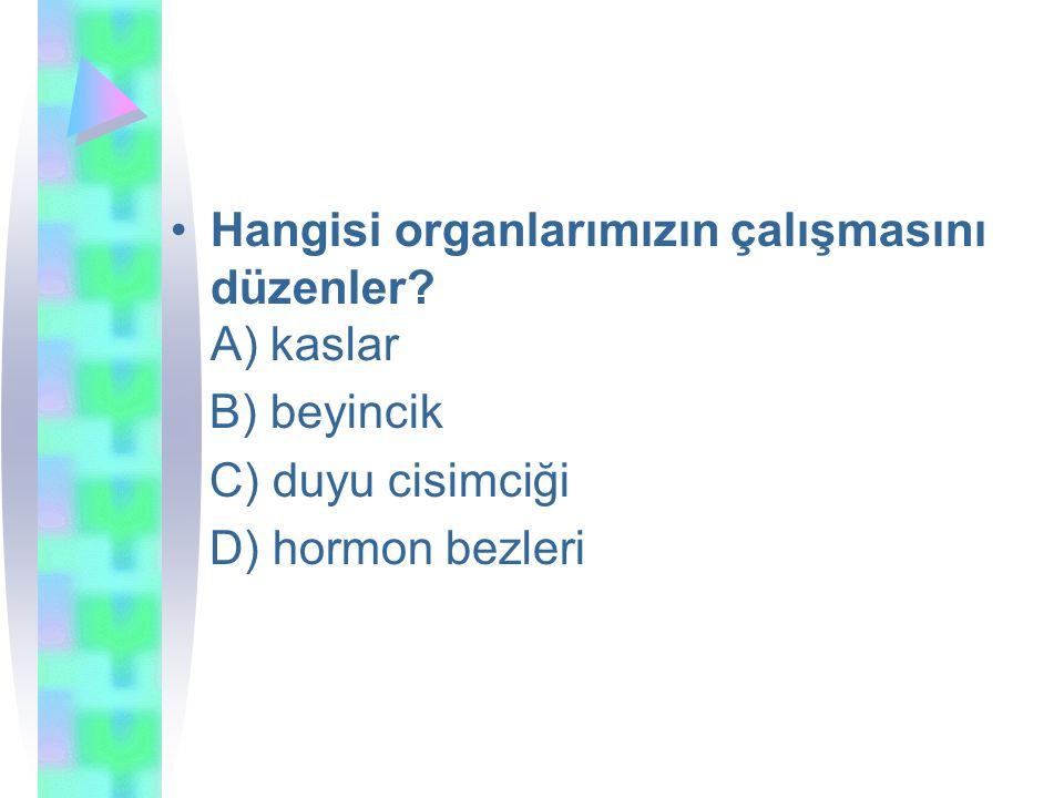 Hangisi organlarımızın çalışmasını düzenler A) kaslar