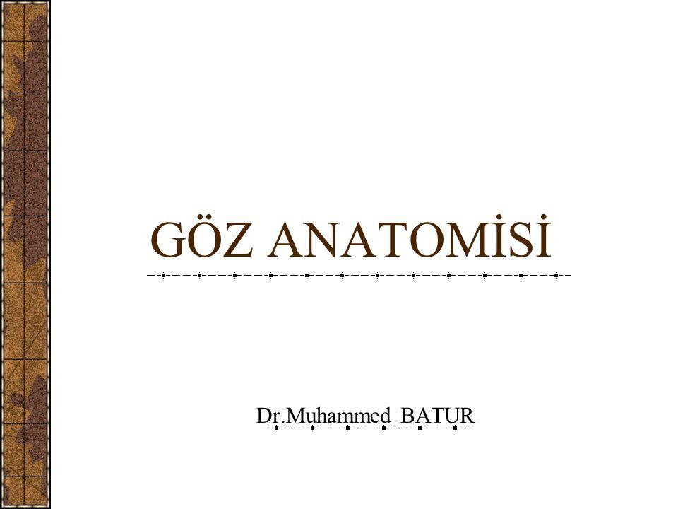 GÖZ ANATOMİSİ Dr.Muhammed BATUR