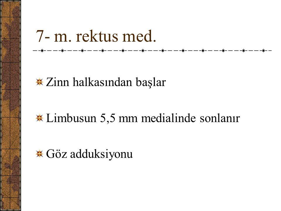 7- m. rektus med. Zinn halkasından başlar