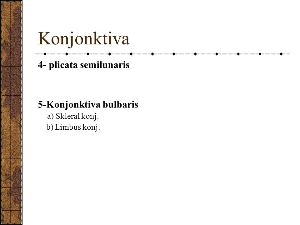 Konjonktiva 4- plicata semilunaris 5-Konjonktiva bulbaris