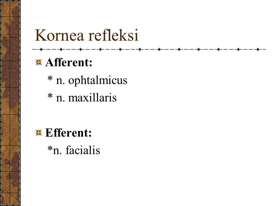 Kornea refleksi Afferent: * n. ophtalmicus * n. maxillaris Efferent: