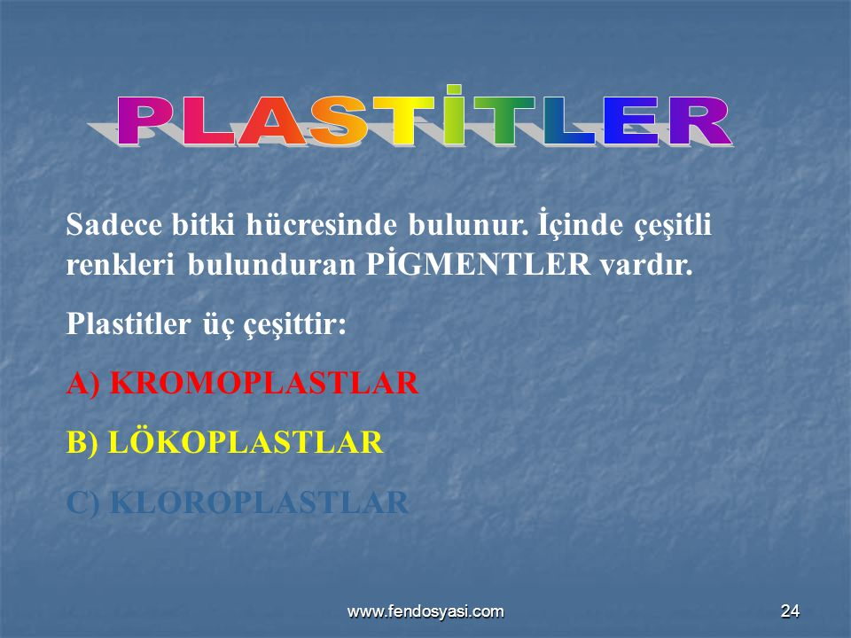 PLASTİTLER Sadece bitki hücresinde bulunur. İçinde çeşitli renkleri bulunduran PİGMENTLER vardır. Plastitler üç çeşittir: