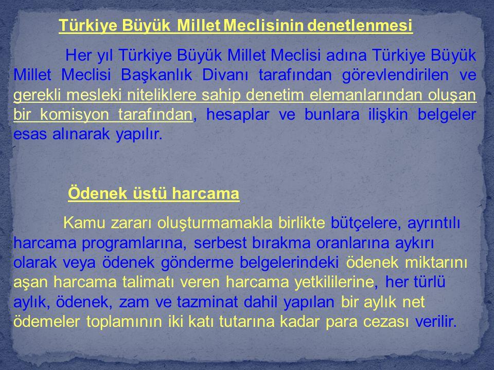 Türkiye Büyük Millet Meclisinin denetlenmesi