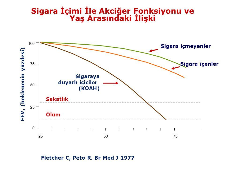 Sigara İçimi İle Akciğer Fonksiyonu ve Yaş Arasındaki İlişki