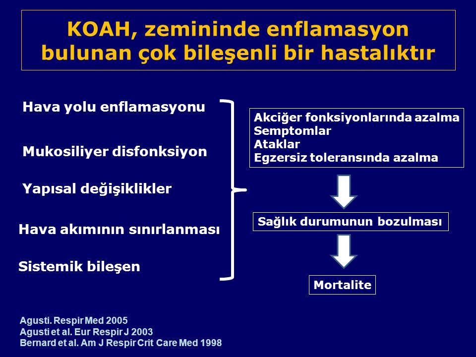 KOAH, zemininde enflamasyon bulunan çok bileşenli bir hastalıktır