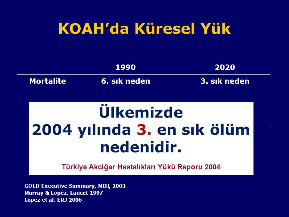 Türkiye Akciğer Hastalıkları Yükü Raporu 2004