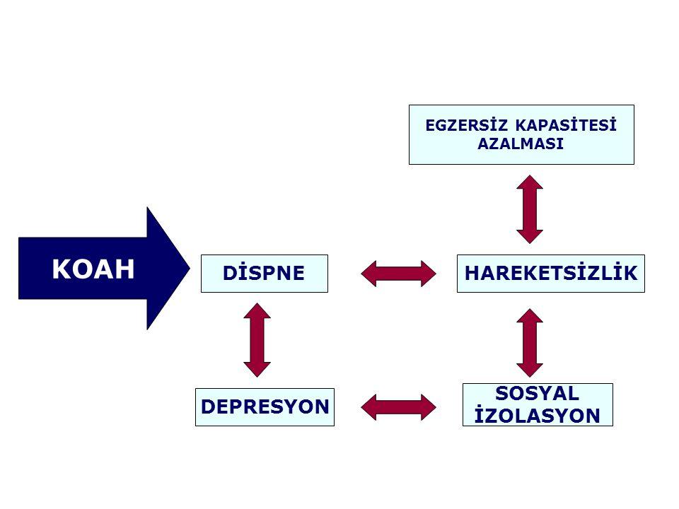 KOAH DİSPNE HAREKETSİZLİK SOSYAL İZOLASYON DEPRESYON