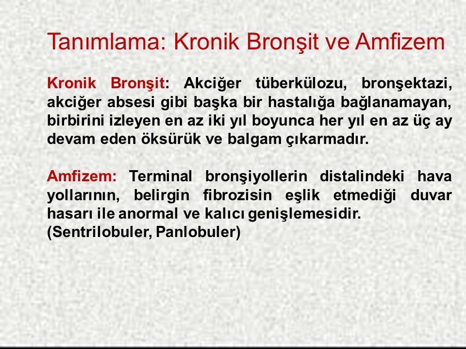 Tanımlama: Kronik Bronşit ve Amfizem