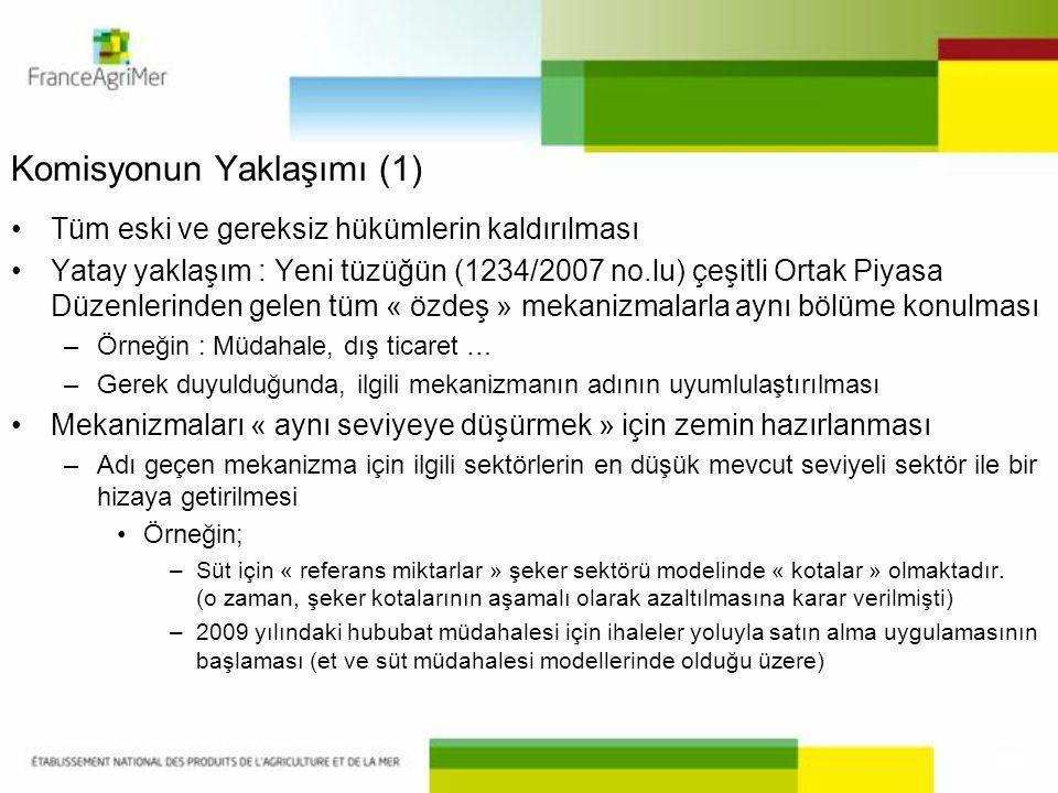 Komisyonun Yaklaşımı (1)