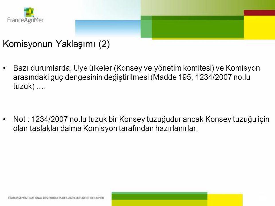 Komisyonun Yaklaşımı (2)