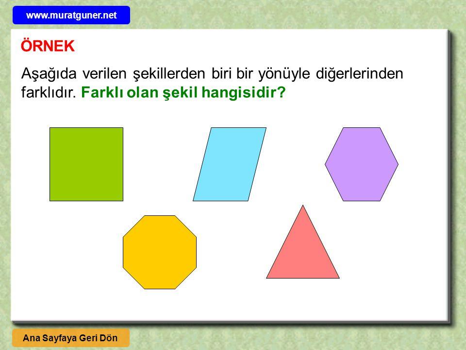 www.muratguner.net ÖRNEK. Aşağıda verilen şekillerden biri bir yönüyle diğerlerinden farklıdır. Farklı olan şekil hangisidir