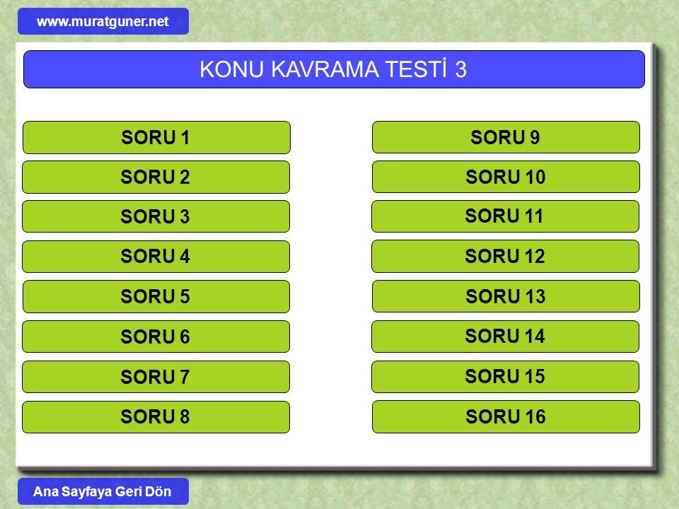 KONU KAVRAMA TESTİ 3 SORU 1 SORU 9 SORU 2 SORU 10 SORU 3 SORU 11