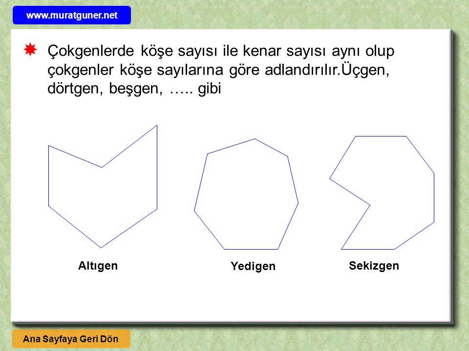 www.muratguner.net  Çokgenlerde köşe sayısı ile kenar sayısı aynı olup çokgenler köşe sayılarına göre adlandırılır.Üçgen, dörtgen, beşgen, ….. gibi.