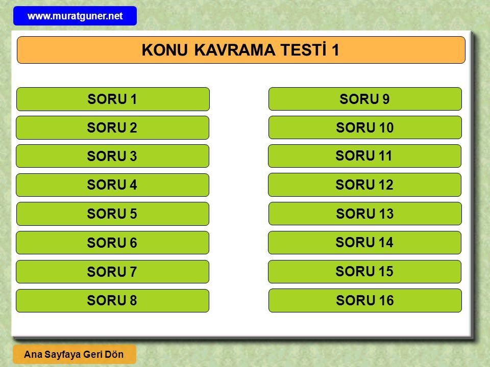 KONU KAVRAMA TESTİ 1 SORU 1 SORU 9 SORU 2 SORU 10 SORU 3 SORU 11