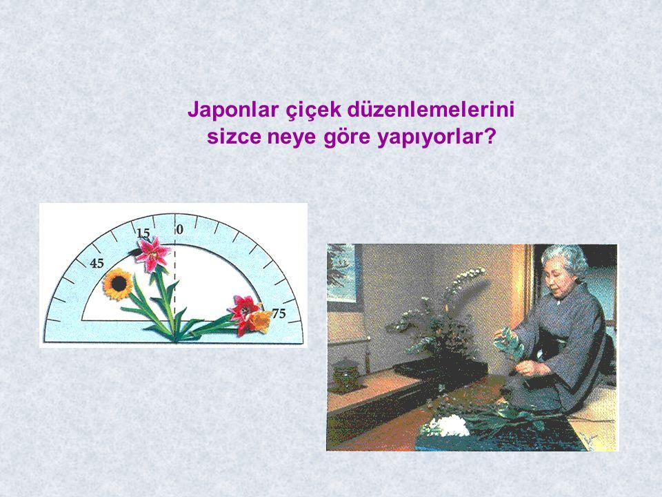 Japonlar çiçek düzenlemelerini sizce neye göre yapıyorlar